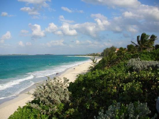 ashram beach 2